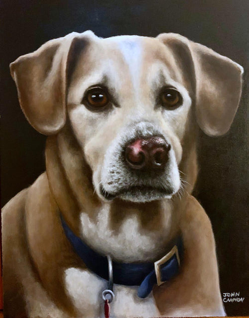 New Pet Portrait for a Birthday Gift