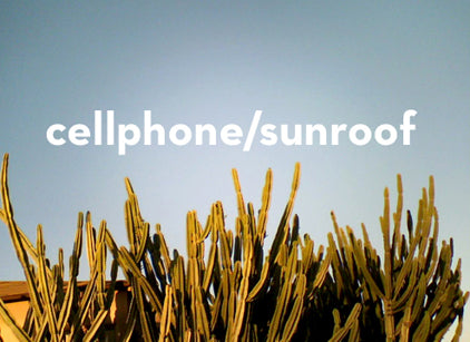 cellphone/sunroof