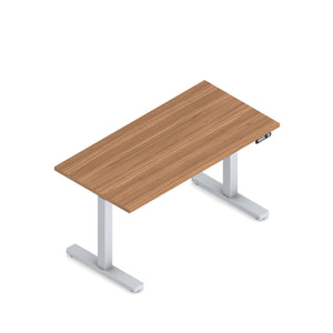 48 x 24 Height Adjustable Sit-Stand Desk - SPECIAL ORDER