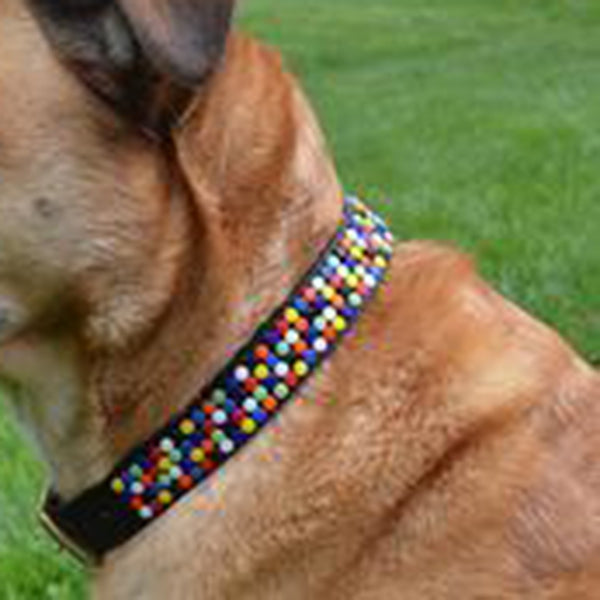 Confetti Modern Beaded, Dog Collar