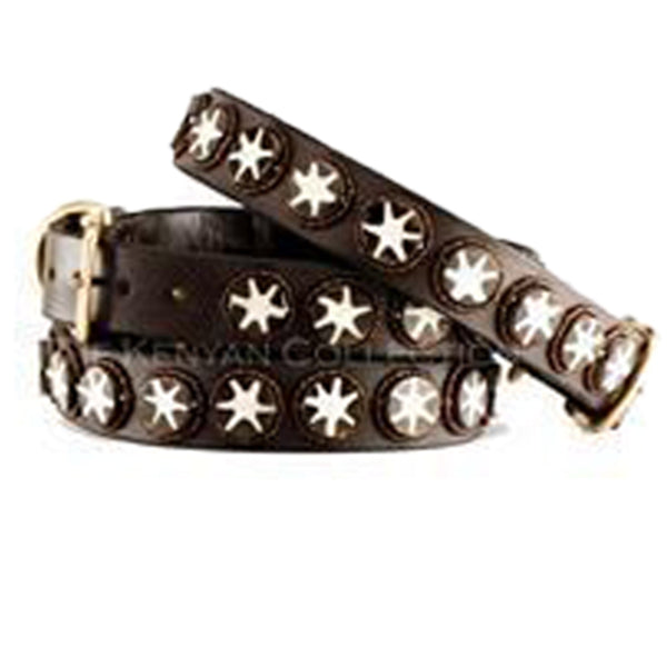 Batik Bone Star Beaded, Dog Collar