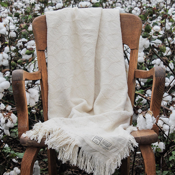 "The Ann, Cotton Throw Blanket, 50"" x 70"""