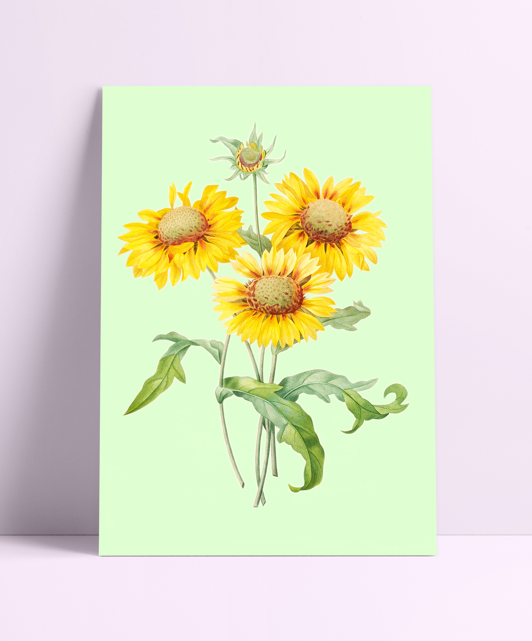 Sunflowers Wall Print