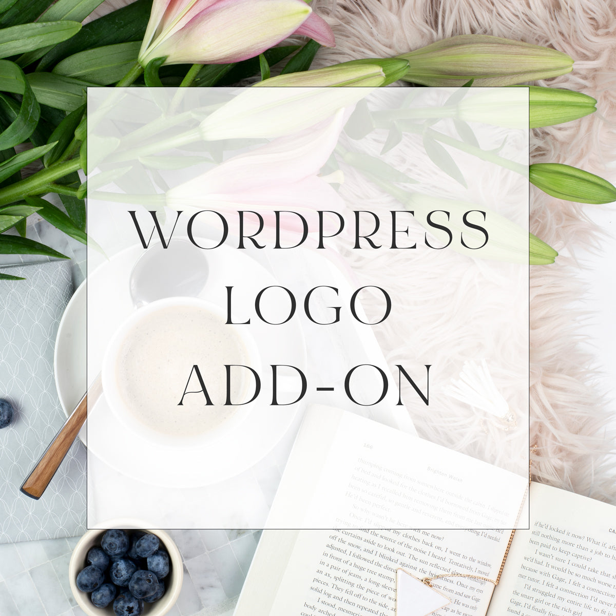 Wordpress Logo Add-on