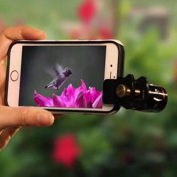 These 4 tips will make your smartphone click a DSLR shot