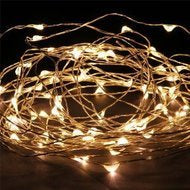 5m Silver Wire Seed Lights (AA)