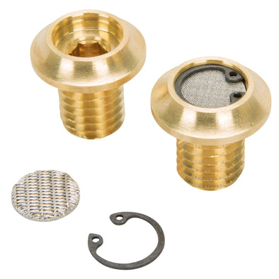 Radius Breather Bolts for Harley-Davidson Evo - Brass
