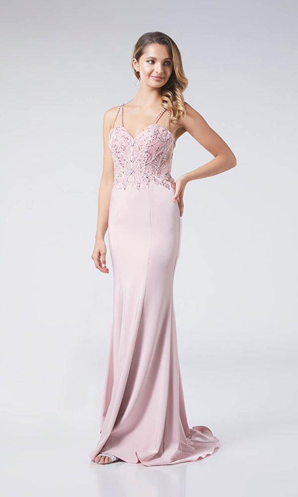 Paula Rose Pink Tiffanys Low Back Prom Evening Dress - Fab Frocks