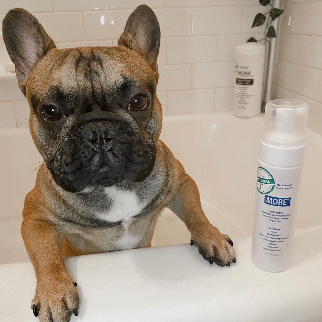 Mettalusso Vegan Clean Beauty fror Pets with Waterless Shampoo and Cleansing Cloths.