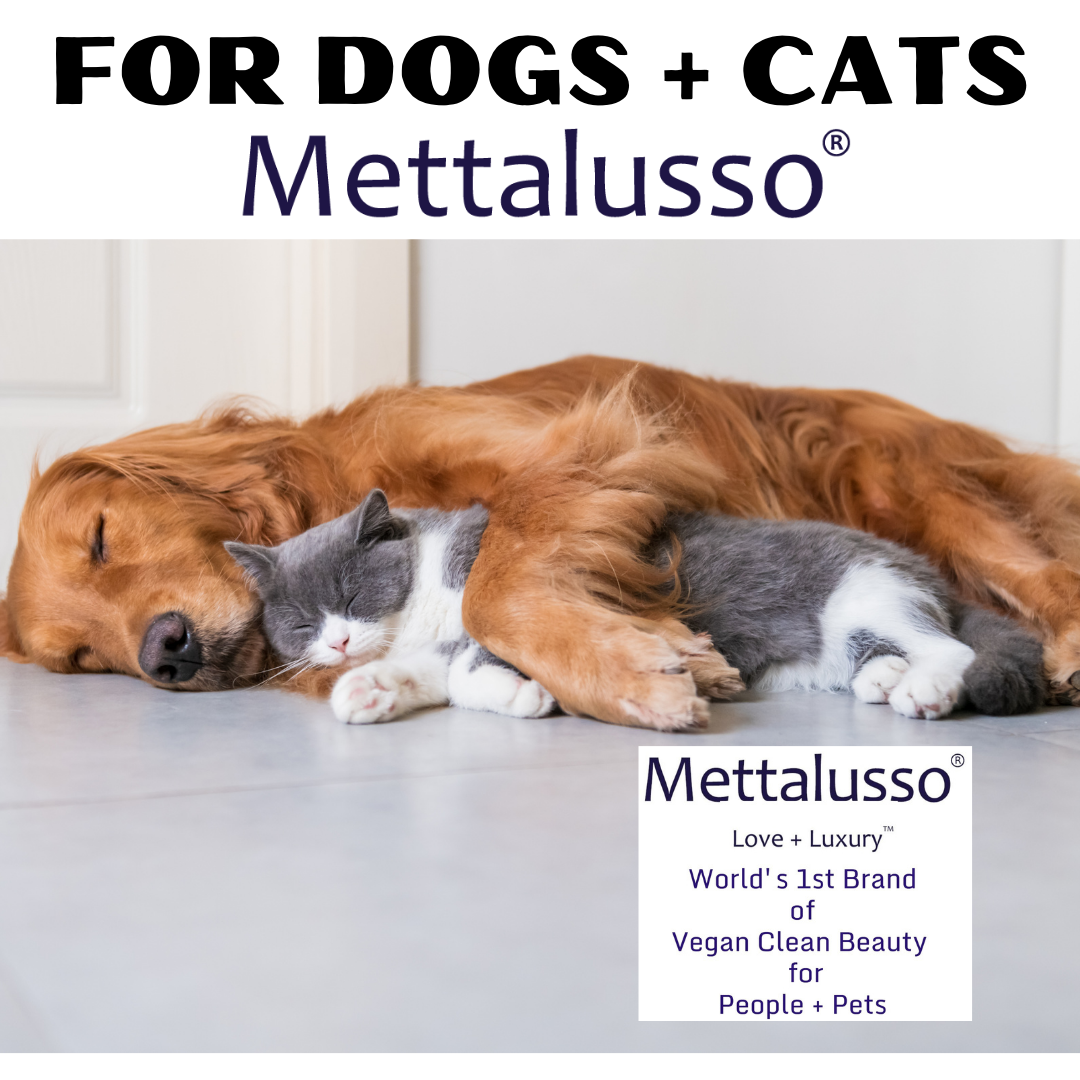 Mettalusso MORE Collection for pets is for both dogs and cats including Glossy Brush to restore their natural sheen to pet hair and fur