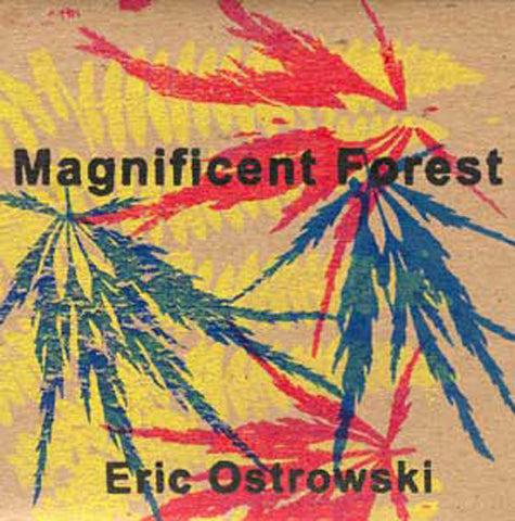 Magnificent Forest DVD/CD