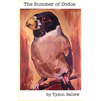 The Summer of Dodos CS + DOWNLOAD (Tummy Rock)