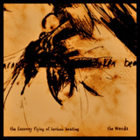 The Faraway Flying of Broken Beating CD