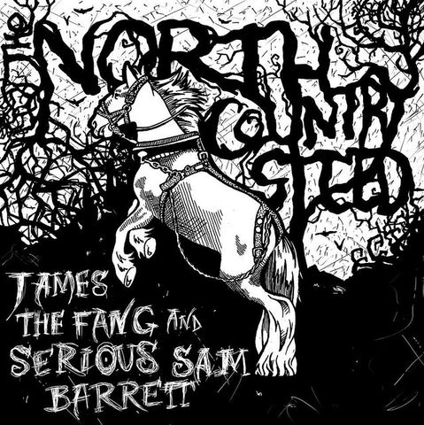 The North Country Steed LP + DOWNLOAD (YaDig? Records)