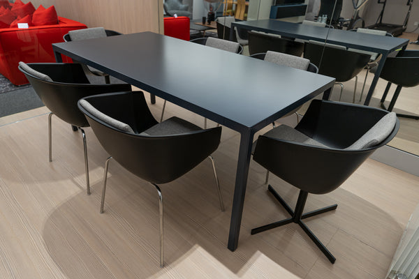Poliform Trevi Table and Strip Chairs