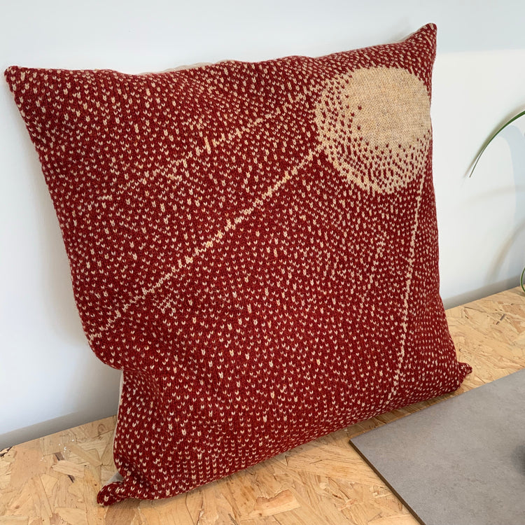 Space Inspired Cushions