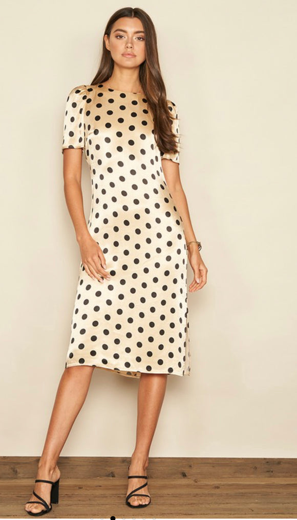 Satin Polka Dot Dress