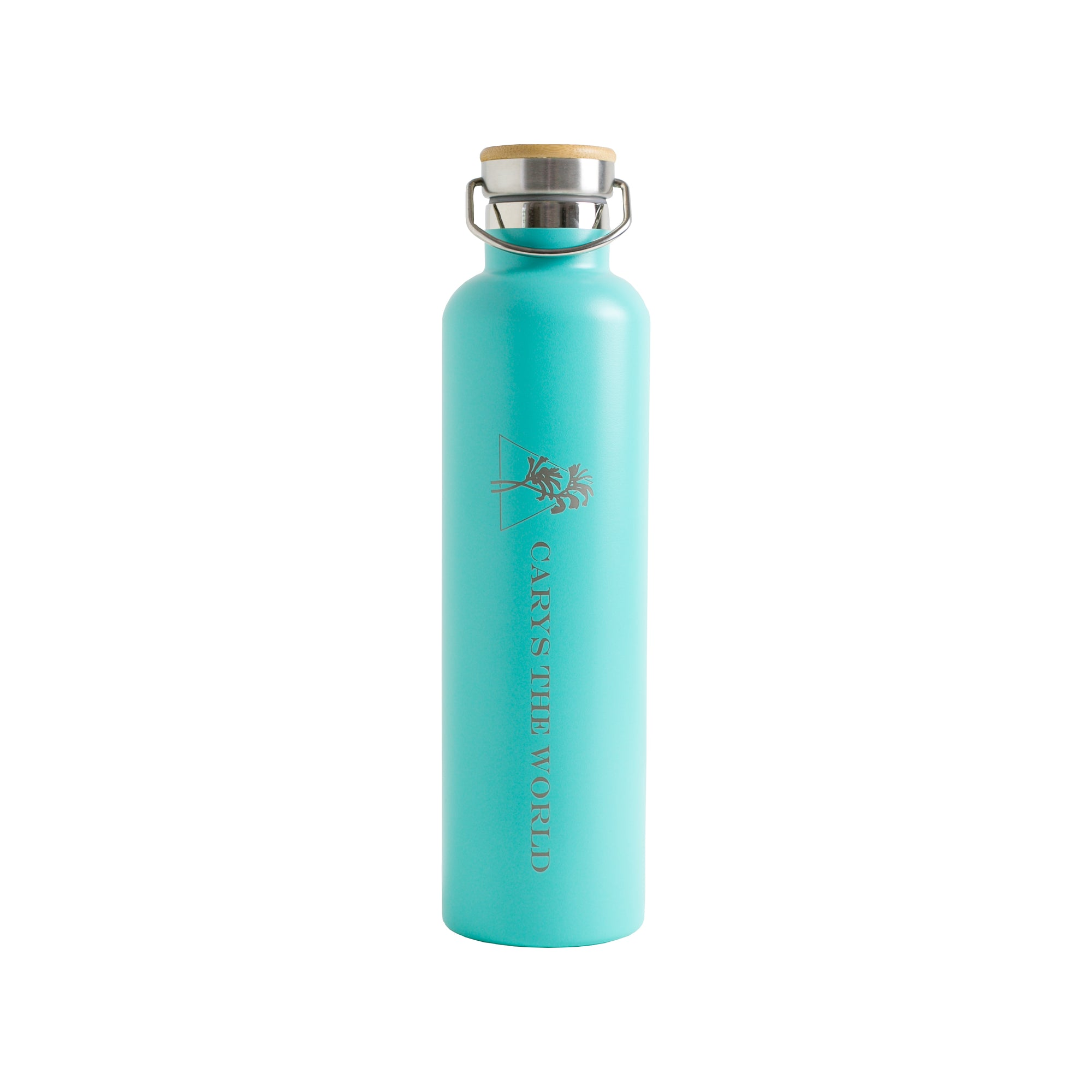 1 Litre Stainless Steel Drink Bottle Aqua - Carys The World Bamboo Bottle Brush