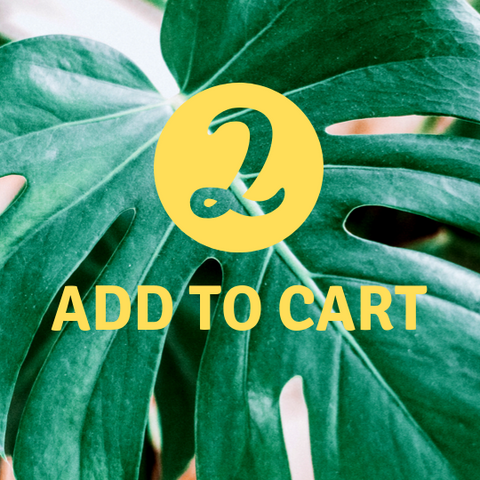 add plant subscription to cart