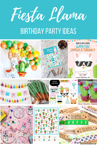 Fiesta Llama Birthday Party Roundup
