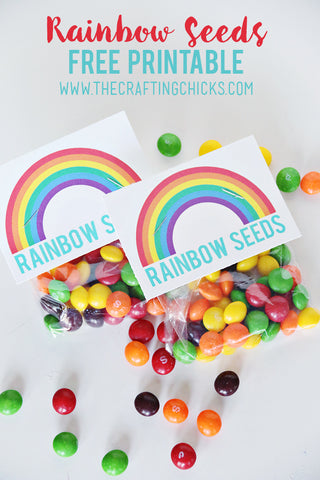 rainbow seed snack favor