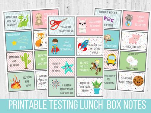 Testing Lunch Box Notes for Kids