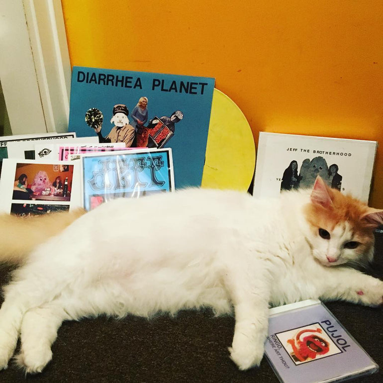 Featured photo for Podcast Episode #36: Infinity Cat Records