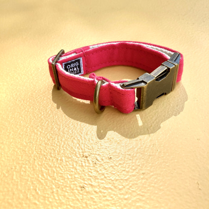 Small Canvas Dog Collar in Hot Pink