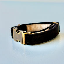 Original Fuzz black velvet dog collar made in Nashville.