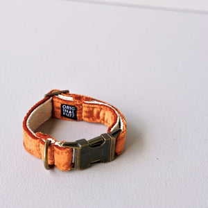 Small Velvet Dog Collar in Orange