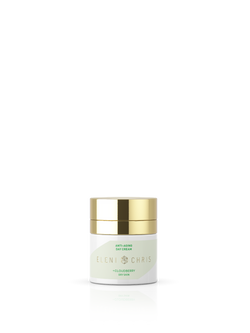 Anti Aging Day Cream Dry Skin