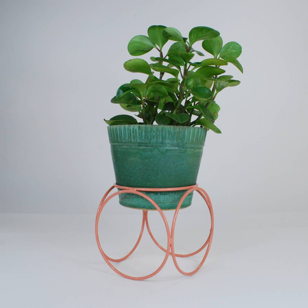 Desert Rose Orbit Planter