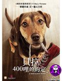 A Dog's Way Home (2019) 貝拉400哩的約定 (Region 3 DVD) (Chinese Subtitled)