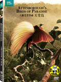 Attenborough's Birds Of Paradise 天堂鳥 DVD (BBC) (Region 3) (Hong Kong Version)