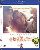 Cat Funeral 愛與貓同行 (2015) (Region A Blu-ray) (English Subtitled) Korean movie a.k.a. Goyangi Jangryesik