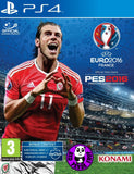 UEFA Euro 2016: Pro Evolution Soccer (PlayStation 4) Region Free (PS4 English Version)