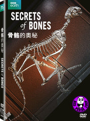 Secrets of Bones 骨骼的奧秘 DVD (BBC) (Region 3) (Hong Kong Version)