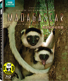 Madagascar Blu-Ray (BBC) (Region A) (Hong Kong Version)