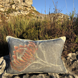 Large Petalled Protea Cushion Cover (Printed)