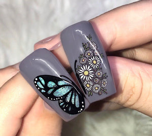 Negative space butterfly wings and daisies