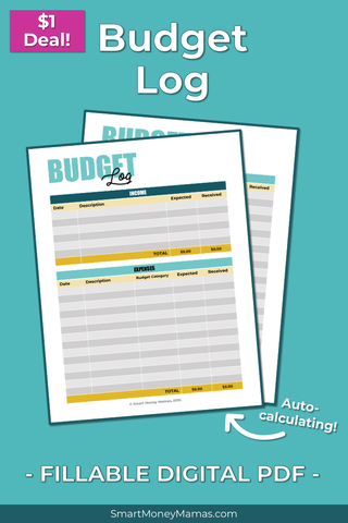 Income & Expense Budget Log - Fillable & Auto-Calculating PDF