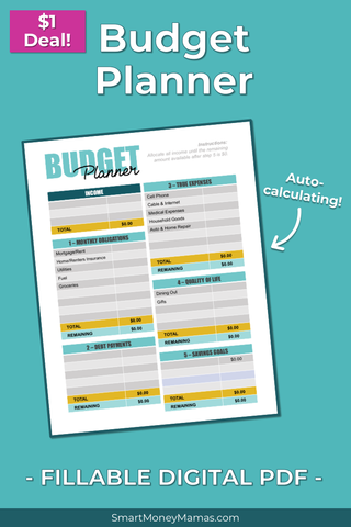 Monthly Budget Planner - Fillable & Auto-Calculating PDF