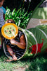 Image of Jungle Safari Tent & Tunnel Combo by Pacific Play Tents - Kids Playhouse World