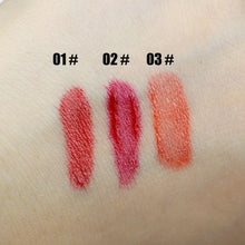 Load image into Gallery viewer, PNF Lip Gloss Liquid Lipstick Lip Makeup Waterproof Long Lip Luster 3 Color Wholesale Cosmetics Lipstick