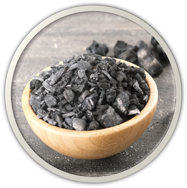 GINGER CHARCOAL SMOOTHIE - MUD FACE WASH (60g, 2.2oz)