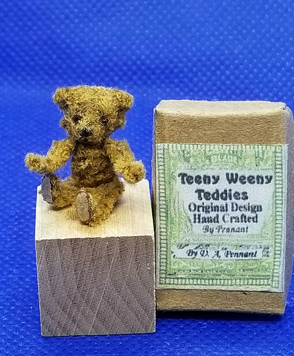 Teeny Weeny Teddy