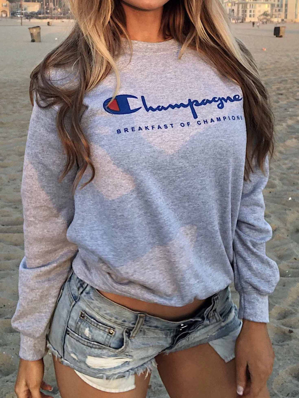 Grey Champagne Pullover