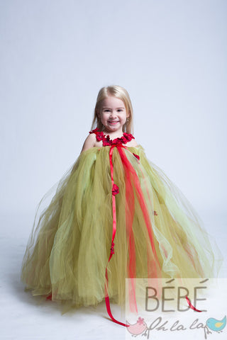 Soft Green and Red Tutu Dress