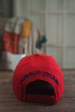 Trump Make America Great Again 2020 Signature Hat (RED) back