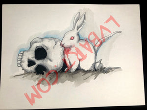 No Ordinary Rabbit 11x15 ORIGINAL
